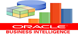 Disponível Oracle Business Intelligence (BI) Applications 11.1.1.8.1