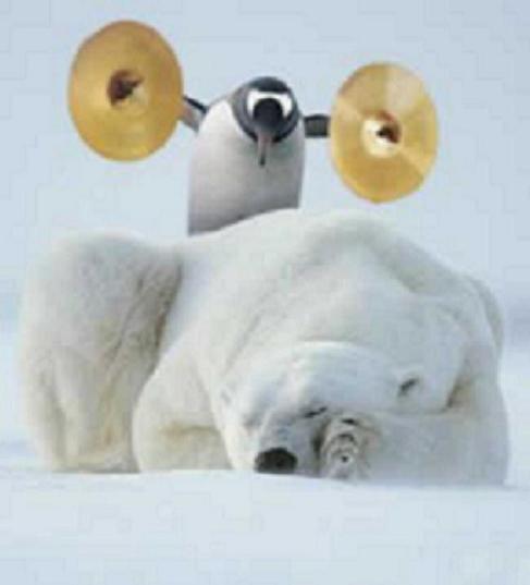 Clique na imagem para uma versão maior  Nome:         penguin-bear-snow-white.jpg Visualizações:1209 Tamanho: 17,6 KB ID:      8422